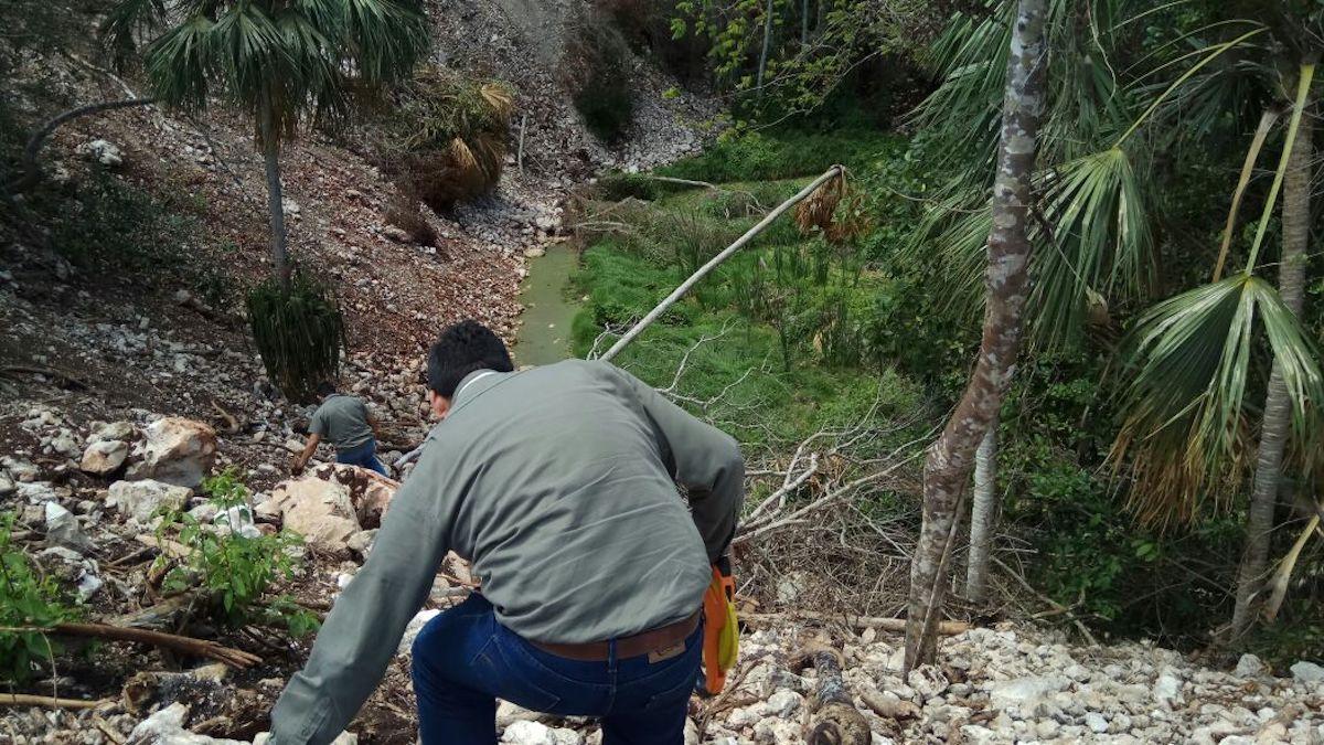 Relleno cenote 5
