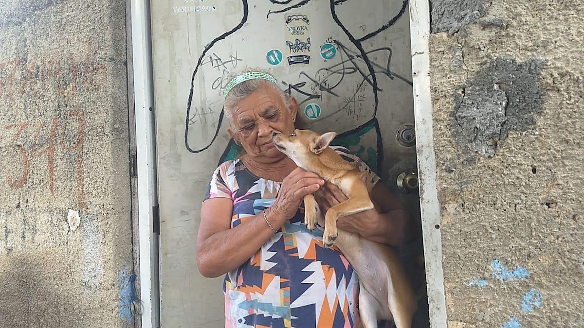aleyda perro