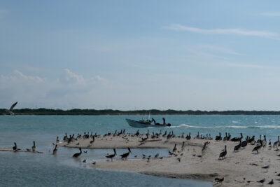 pescadores 2