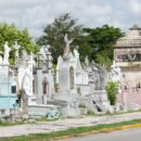 Mantenimiento cementerios 2